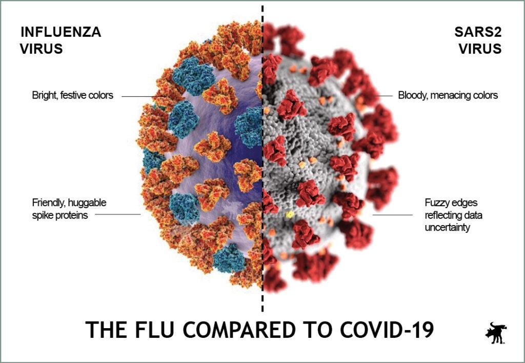 C19_fluvirus2